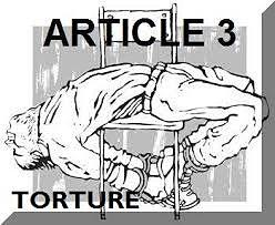 Es Necesaria una Investigación Oficial Efectiva de las Torturas: asunto Arratibel Garciandia contra España