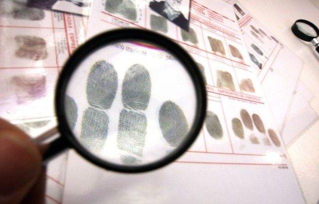 El derecho a la investigación. Caso Ataun Rojo contra España