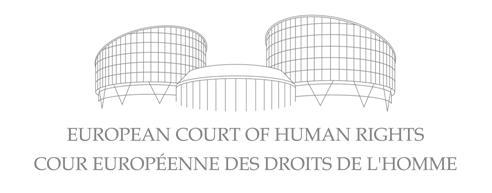 Artículo 47 del Reglamento de Procedimiento ante el Tribunal Europeo de Derechos Humanos.